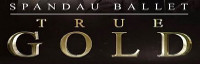 True Gold (Tribute to Spandau Ballet) logo