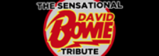 The Sensational David Bowie Tribute Band logo