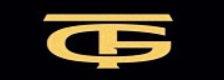 True Gold - A Tribute to Spandau Ballet logo