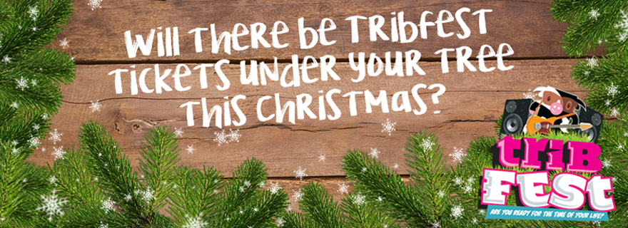 Will there be Tribfest tickets under your tree this Christmas?