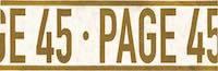 Page 45 logo