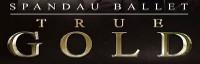 True Gold (Tribute to Spandau Ballet) logo