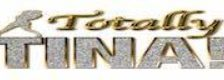 Totally Tina (Tribute to Tina Turner) logo